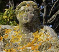 b_200_0_16777215_00_images_stories_tuscania_sarcofago-tuscania.jpg